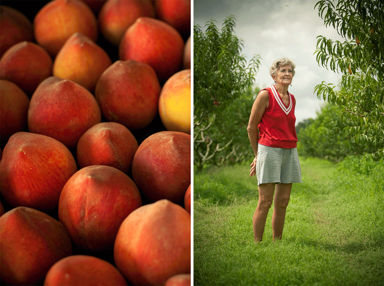 Peaches_IMG_8194-Edit